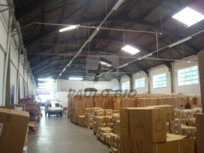 Galpao Industrial - Casa Branca - Ref: 300 - L-300