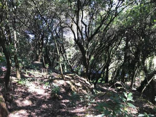 Imagen 1 de 6 de Terreno En Venta, Cuajimalpa De Morelos, Ciudad De México