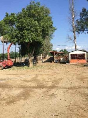 Excelente Rancho En Venta En