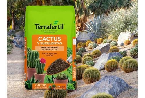 Terrafertil Cactus Y Suculentas 5litros