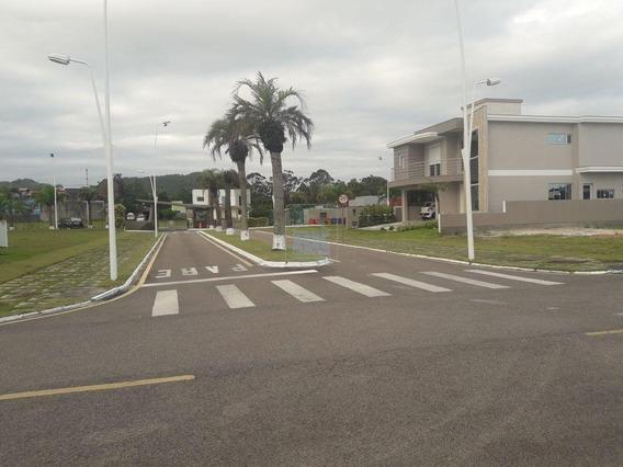 Terreno À Venda Em São João Do Rio Vermelho - Te004764