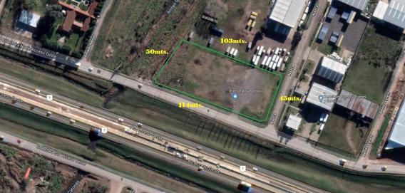 Alquiler De Terreno De 5000m2 Sobre Acceso Oeste En Francisco Alvarez