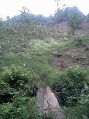 Terreno Para Proyectos De Campo