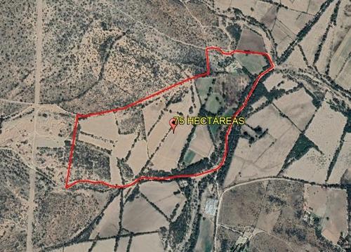 Imagen 1 de 13 de Rancho San Luis Potosí, Santa María Del Río  75 Hectáreas