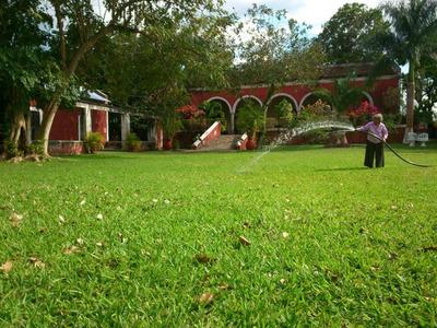Hacienda Kanyuyun En Yucatán