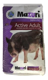 Alimento Mazuri Mini-pig Active 11.3 Kg - Envio Gratis