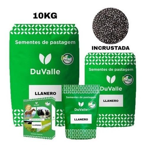 Imagem 1 de 4 de Capim Llanero 10kg Braquiaria Humidicola 90%pureza Incrustad