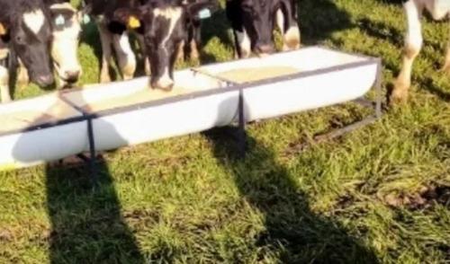 Comederos Y Bebederos Economicos Ovejas Ganado Vacas