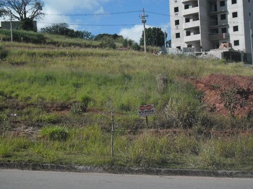 Imagem 1 de 1 de Terreno Comercial - Morrão Da Força - Te0696