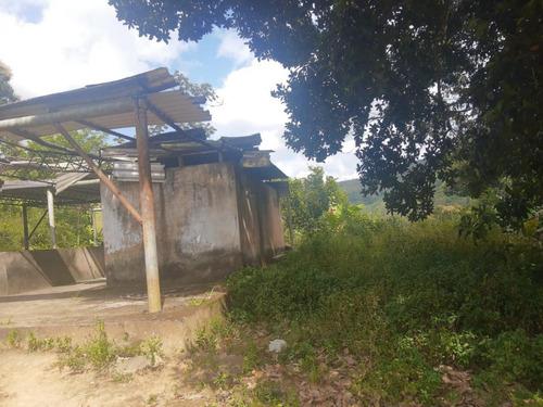 Imagem 1 de 9 de Sítio / Chácara Para Venda Em Murici, Zona Rural - In - 005_1-1697775