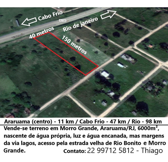 Terreno 6000m² Morro Grande- Araruama/rj Margem Da Via Lagos