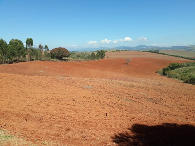 Fazenda No Sul De Minas , Cidade De Conceição Do Rio Verde , Vocação Grãos , 90 % Tratorável, Casa Sede , Curral , Boa De Água. - 4348