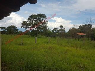 Venda - Fazenda - Zona Rural - Itapagipe - Mg - D6709