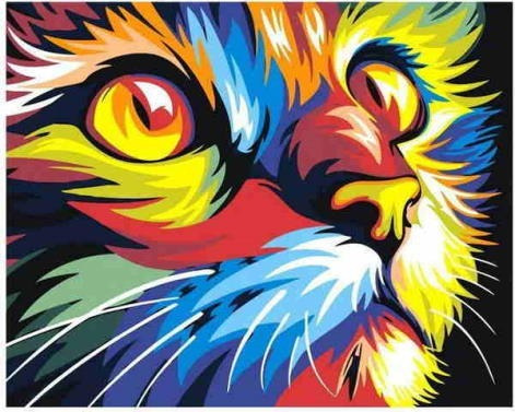 Pintura Numerada Gato Colorido