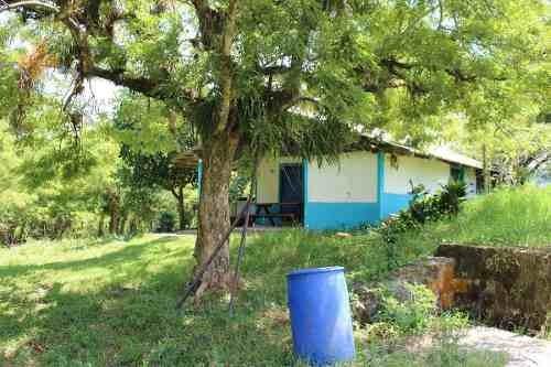Rancho En Venta Hueytamalco Puebla. Teziutlán, Con Producción De Cítricos Y Ganado