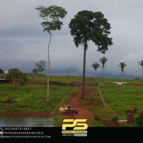 Imagem 1 de 5 de Fazenda À Venda, 120000000 M² Por R$ 217.000.000,00 - Zona Rural - São Félix Do Xingu/pa - Fa0271
