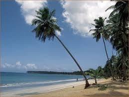 Terrenos En Playa El Limón De Miches