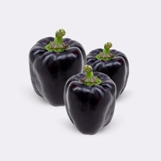Semillas Pimiento Negro Dulce Pack X 20