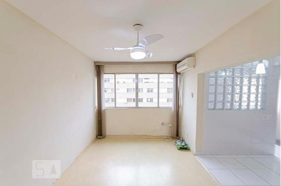 Apartamento No 13º Andar Com 2 Dormitórios E 1 Garagem - Id: 892950889 - 250889