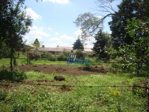 Terreno À Venda, 1800 M² Por R$ 660.000,00 - Borda Do Campo - São José Dos Pinhais/pr - Te0200