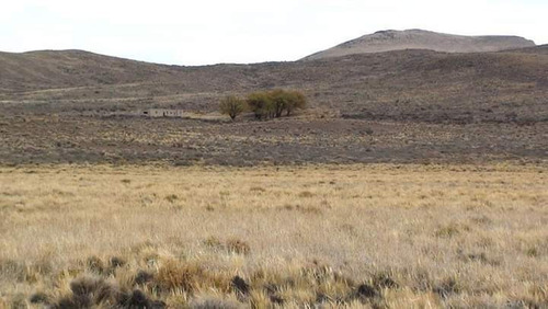 Imagen 1 de 14 de Oportunidad!!! Campo Minero Ganadero Permuto/financio