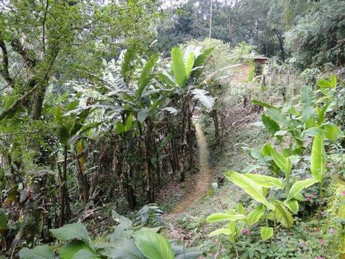 Terreno Para Venda Em Guapimirim, Guapimirim - Tr066_1-223415