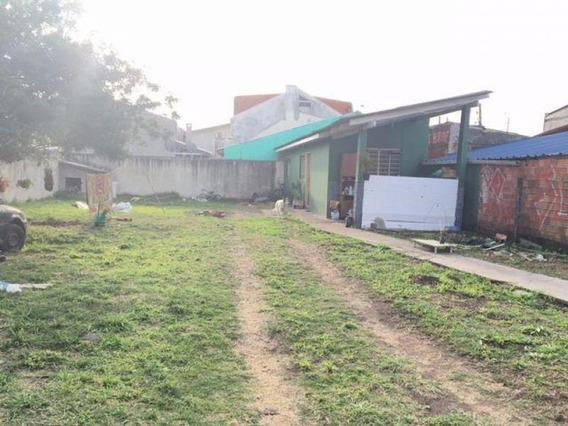 Terreno Para Venda Em São José Dos Pinhais, Afonso Pena - L596