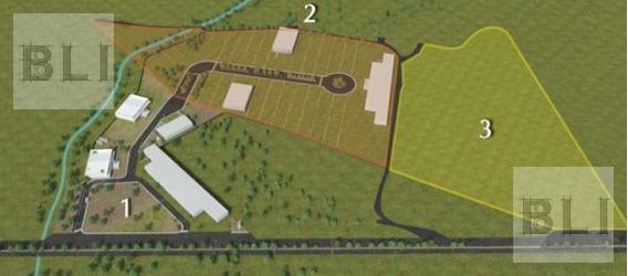 Terreno Industrial En Venta En Irapuato - Irapuato