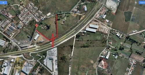 Terreno A Venda No Bairro Planta Quississana Em São José - 4213-1