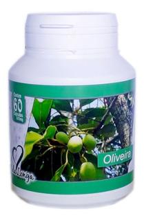 Oliveira (folha Em Po) 60 Capsulas De 500 Mg