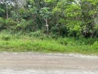 Terreno A 1,5km Da Rodovia Em Itanhaém-sp