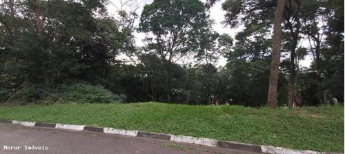 Imagem 1 de 7 de Terreno - Te00007 - 67693248