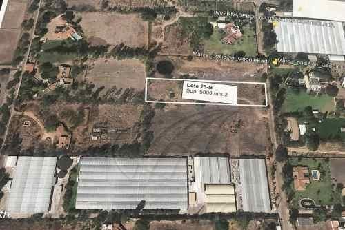 Terrenos En Venta En Valle Verde (haciendas Valle Verde), Apaseo El Grande