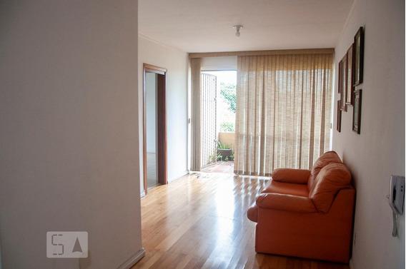 Apartamento Para Aluguel - Camaquã, 2 Quartos, 72 - 893036323