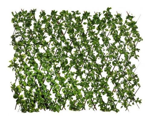 Imagen 1 de 9 de Biombo De Hojas Verdes D Celosia De Hojas Decorativa Eventos