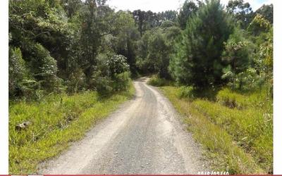 Fazenda Rural À Venda, Serra Da Abelha, Vitor Meireles. - Codigo: Fa0188 - Fa0188