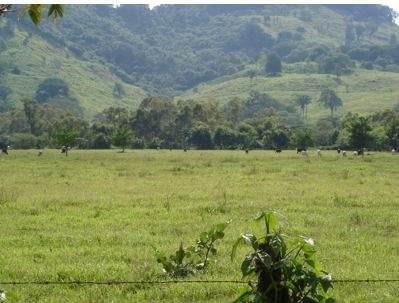 Huixcuautla Venustiano Carranza Puebla Terreno Venta
