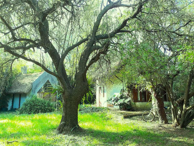 Casa En Colonia C/ Parque 1000 M2