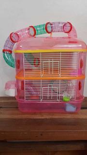 Entretenida Jaula Hamsters 2 Pisos Incluye 1 Hamster Golden
