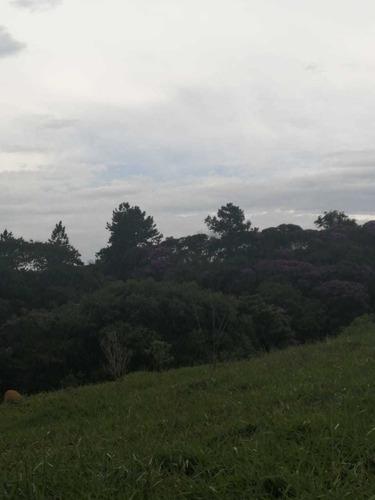C03- Terrenos Em Igaratá