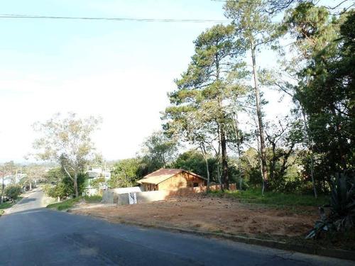 Imagem 1 de 5 de Terreno - Belem Novo - Ref: 226039 - V-226039