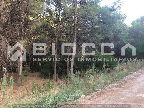 Imagen 1 de 6 de Terreno En Venta En El Pinar