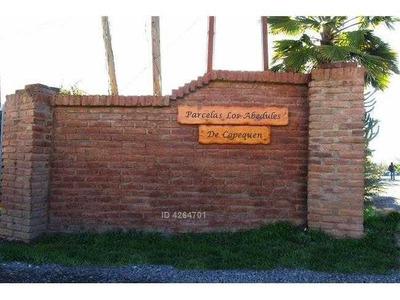 Parcela Los Abedules De Copequen 1600
