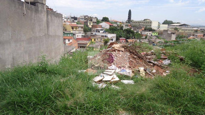Terreno Residencial Para Locação, Jardim Ana Rosa (palmeiras), Suzano. - Te0049