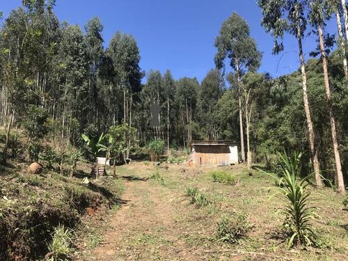 Imagem 1 de 11 de Chácara A Venda No Bairro Centro Em Bocaiúva Do Sul - Pr.  - 501-1