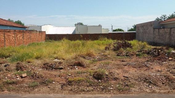 Terreno Em Jardim São Braz, Birigüi/sp De 0m² À Venda Por R$ 100.000,00 - Te81927