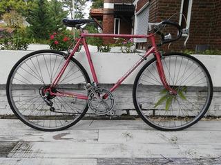 Bici De Cromoly Marca Shogun (japonesa) Rod 28 Shimano
