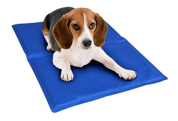 Tapete Pet Gel Refrescante Cães - 65x50 Bordas Reforçadas