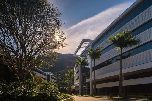 Imagem 1 de 30 de Sala Comercial À Venda, Saco Grande, Florianópolis. - Sa0181