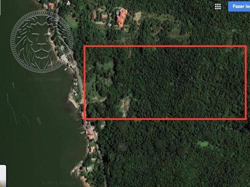 Terreno - Ribeirao Da Ilha - Ref: 1651 - V-1688